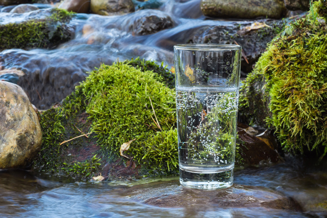 carbonice-frascht-vatten